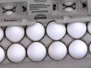 Eggs generic