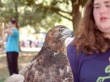 UNC Science Expo offers fun
