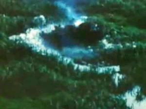 Agent Orange was an herbicide contaminated with the toxic nerve gas dioxin that was sprayed on the jungles of Vietnam during the war.