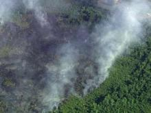 Eight fire departments and the North Carolina Division of Forest Resources responded to a large forest fire off of North Carolina Highway 411 in Sampson County  on June 2, 2011.