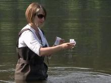 Counties test lakes for bacteria, decide closures