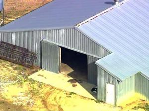 The Hoke County Sheriff's Office raided a farm Thursday morning, Dec. 29, 2011, that raises turkeys for Butterball after an animal rights group complained about animal cruelty.