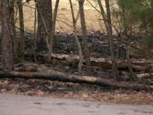 Fires blacken Durham's Piney Wood Park