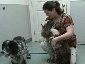 Jamie Marshall and two of her four dogs