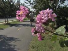 Dozens of Durham residents walked, jogged and biked Saturday along the American Tobacco Trail, marking the second event in the last three weeks designed to combat crime on the trail.