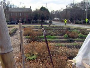 Raleigh City Farm, at 800 N. Blount St.