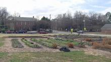 The nonprofit group that planted an urban farm in a vacant lot on Blount Street is urging the City of Raleigh to ease up on restrictions so more community gardens can sprout up in downtown Raleigh.