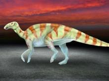 Nancy the dino fossil unlocks prehistoric stories