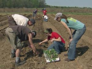 The Agroecology Education Farm at North Carolina State University is small and sustainable, a model that scientists say is the future of farming.