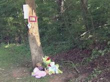Families mourn child's death in crash near Selma