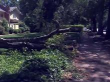 UNC student trying to escape storm when killed by tree