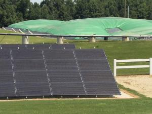 Tarps cover and trap methane at Butler Farms in Broadway, N.C.