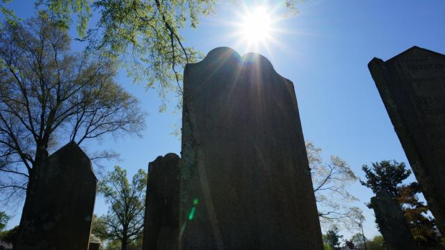 The sun shines over a head stone in City Cemetery in downtown Raleigh.
