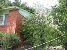 Downed trees from severe thunderstorms on Thursday left plenty of work Friday for Durham city workers and homeowners.