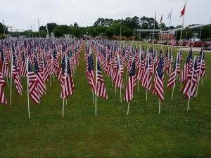Hundreds of flags were flying in downtown Fayetteville Saturday as a living display of heroism and a patriotic tribute to the strength and unity of Americans.