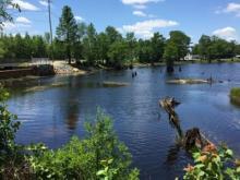 Godwin residents call Rhodes Pond an eyesore