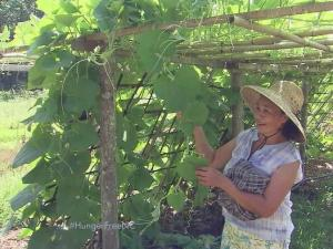 The Transplanting Traditions Community Farm helps Burmese refugees adapt to the Triangle with meaningful work and a source of income.