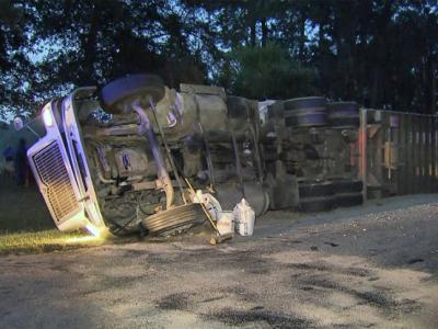 Several hogs killed when tractor-trailer overturns
