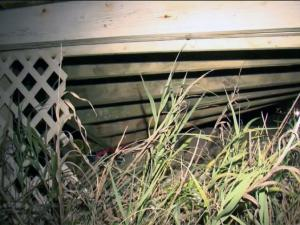 One person was taken to a hospital Monday evening after a deck collapsed at a home on Emerald Isle, police said.