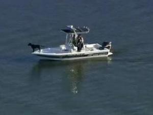 Authorities were searching Monday afternoon for a man who fell from a boat on Falls Lake.