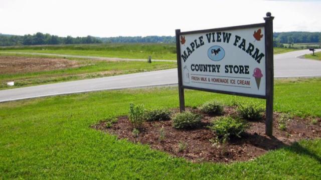 Maple View Farm