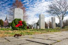 Volunteers at Oakwood Cemetery in Raleigh decorated 33 graves of military veterans Saturday with holiday wreaths, part of the national Wreaths Across America effort.