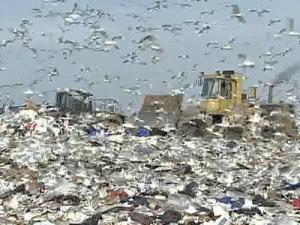 Landfill generic
