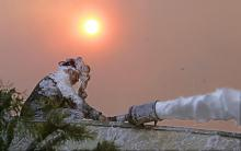 Images from the wildfires ravaging southern California.