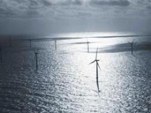 Some wind turbines in one of the world's biggest offshore wind farms operated by Dong Enegry are in the North Sea, 19 miles west of Denmark's Jutland peninsula. Denmark's Crown Prince Frederik, flipped a switch Thursday to start the turbines, which have a production capacity of 209 megawatts, enough to power 200,000 homes. (AP Photo/Jasper Carlberg/POLFOTO)