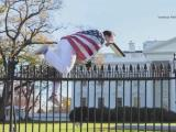 White House fence jumper