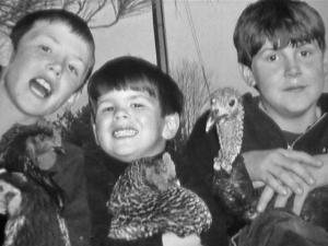The Parker boys hold some of their pet birds, including Tom the Turkey (right). Tom, a rare, black Heritage turkey, was stolen from the Parkers' barn at 3525 Bartley Holleman Road.