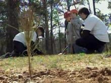 Trees planted in honor of Apex teen