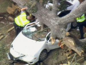 A tree fell on a car Wednesday at Old Stage Road and Old Stagecoach Lane in Wake County.