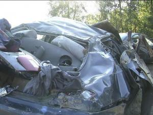 Only the driver survived a single-car crash in Wayne County early Sunday.