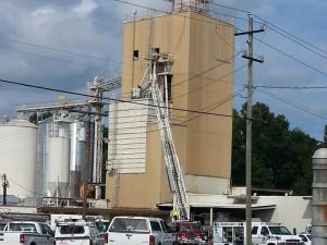 A contractor who fell into a silo holding dog food in Sanford Monday afternoon has been rescued and is expected to be OK, authorities said.