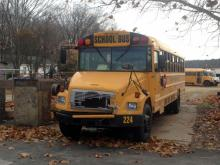 "In what State Highway Patrol troopers called a ""freak accident,"" a large oak tree fell onto the engine compartment of a school bus in Franklin County early Friday."