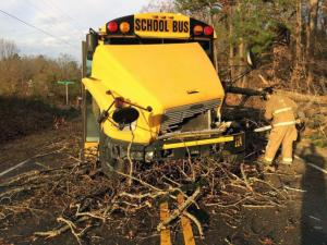 "In what state troopers called a ""freak accident,"" a large oak tree fell onto the engine compartment of a school bus in Franklin County on Dec. 6, 2013."