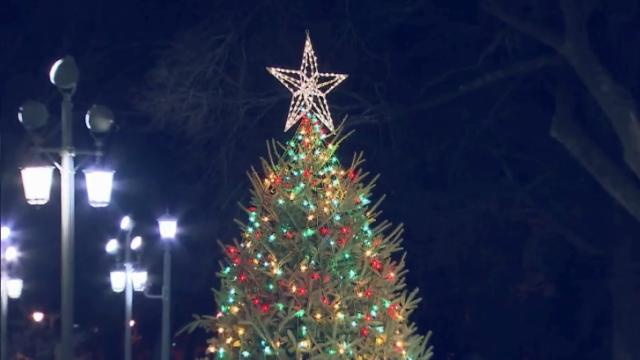 State Capitol Christmas tree