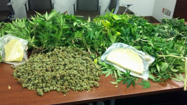 Durham County sheriff's deputies seized 31 pounds of of marijuana and 158 marijuana plants during a raid on a home Jan. 16, 2014.