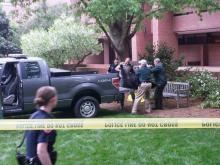 RAW: Dead bear removed from NCSU campus