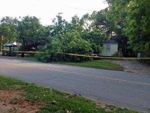 A tree fell on a home in Raleigh Saturday afternoon.
