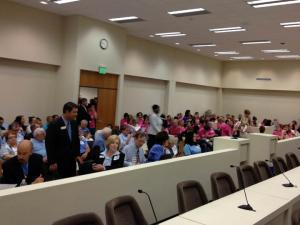Supporters and opponents of a bill that would add restrictions on North Carolina abortion clinics, dressed in blue and pink, respectively, packed a House committee room on July 9, 2013, for a public hearing on the measure.