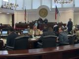 Senate debates election law changes, abortion regulations