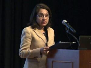 Dr. Rosemary Stein speaks before the Medicaid Reform Advisory Group on Jan. 15, 2014.