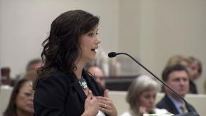 House panel takes up newborn testing, food stand seating