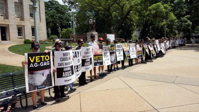 Protestors gather outside the state Capitol on May 27, 2015 to ask Gov. Pat McCrory to veto the Ag-Gag bill.