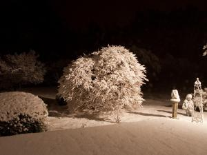 These photographs were taken at midnight March 1 in Roxboro.