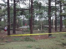 Viewers submitted these photos of Pine Forest High School after the tornado on Saturday.