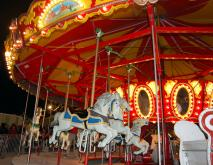 Photos of your adventures at the 2010 North Carolina State Fair.