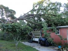 A ferocious line of thunderstorms raced through central North Carolina on Thursday, uprooting trees and snapping power lines with straight-line wind gusts up to 70 mph.